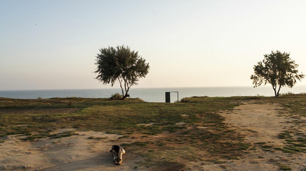 Кучугуры - дорога на пляж Азовского моря