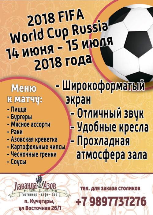 смотрим Чемпионат футбола 2018 в кинозале отеля Лаванда Азов